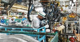 Leading index shows economic recovery on track